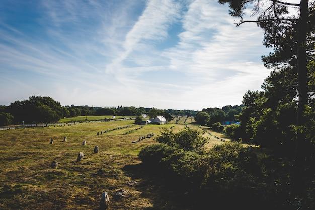 Panoramica di un campo di erba circondato dagli alberi sotto un chiaro cielo Foto Gratuite