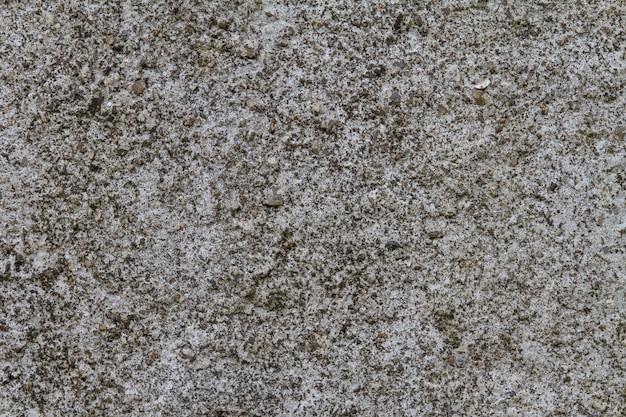 Parete grigia di lerciume con struttura naturale del cemento Foto Premium