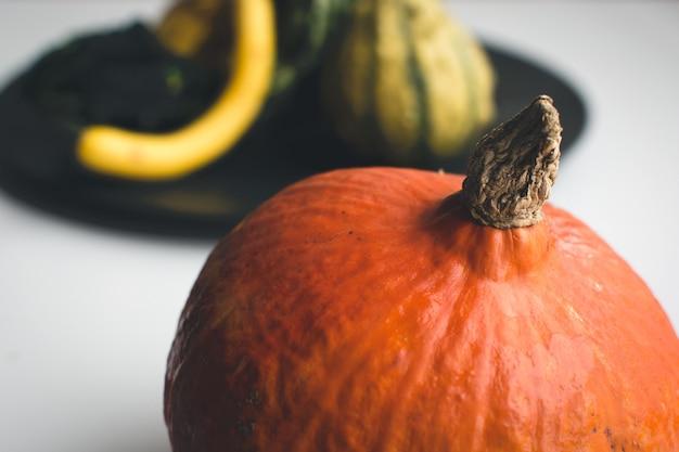 Particolare della zucca arancione autunnale Foto Gratuite
