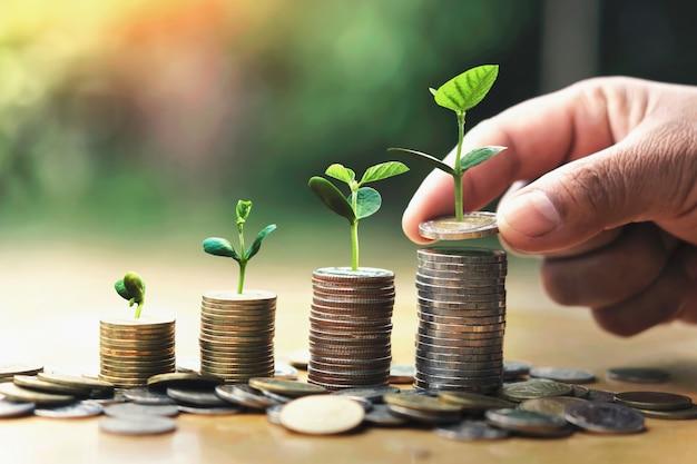 Passi mettere le monete sulla pila con la pianta che cresce sui soldi Foto Premium