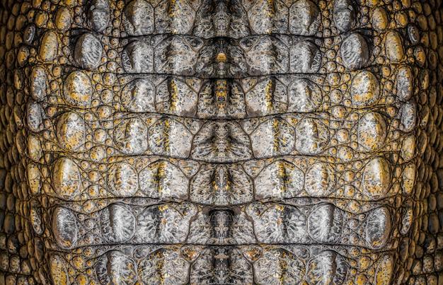 Pelle di coccodrillo, foto del primo piano come fondo Foto Premium