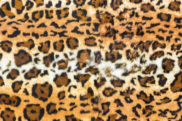 Pelle di leopardo sullo sfondo, stampa animalier Foto Premium