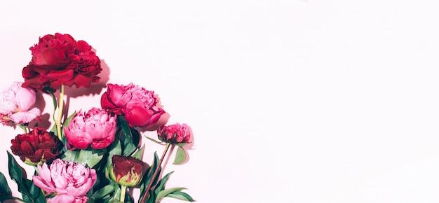 Peonie e foglie rosa con ombra dura su fondo pastello Foto Premium