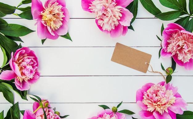 Peonie fiori su uno sfondo bianco. messa a fuoco selettiva. Foto Premium