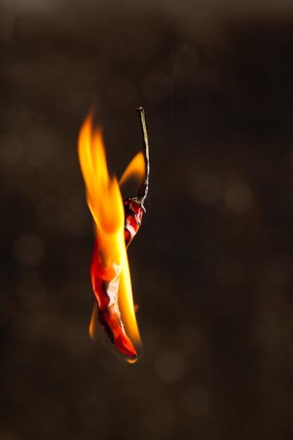 Peperoncino in fiamme Foto Premium
