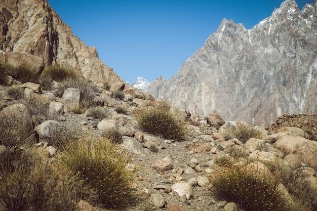 Percorso di trekking nella zona selvaggia circondata da montagne, pakistan. Foto Premium