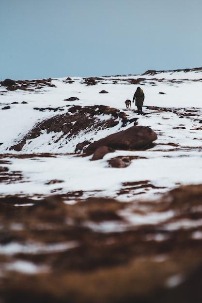 Persona con animali su terreno innevato durante il giorno Foto Gratuite