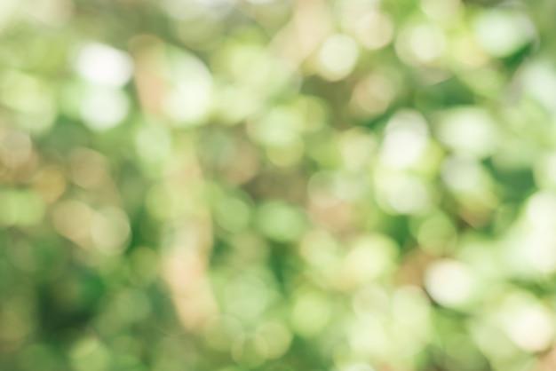 Persona correre astratto bokeh luce del sole Foto Gratuite