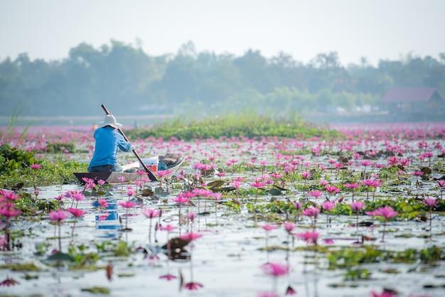 Pescatori tailandesi sul lago di loto tailandese in lago d'acqua dolce, provincia di nong khai Foto Premium