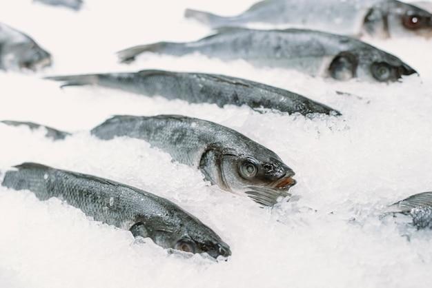 Pesce congelato in ghiaccio in un supermercato. avvicinamento Foto Premium