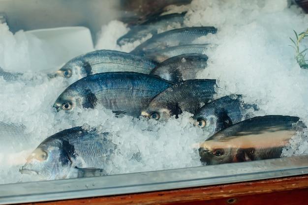 Pesce crudo fresco in frigorifero con ghiaccio Foto Premium