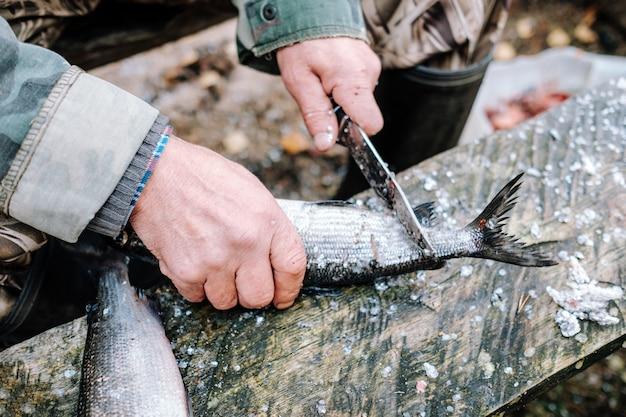 Pesce di pulizia del pescatore sul bordo di legno all'aperto Foto Premium