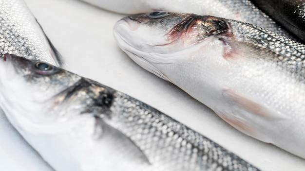 Pesce fresco sul tavolo bianco Foto Gratuite