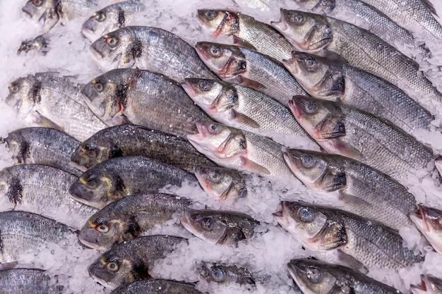 Pesce refrigerato meravigliosamente decomposto su ghiaccio nel supermercato. Foto Premium