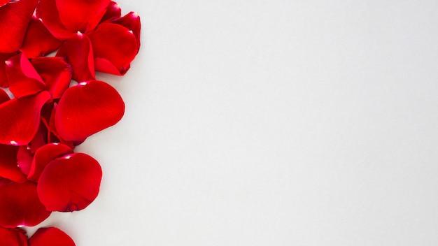 Petali di rosa rossa sparsi sul tavolo Foto Gratuite