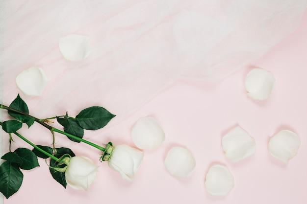 Petali di rose bianche con velo da sposa Foto Gratuite