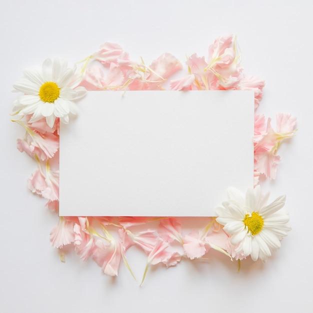 Petali e camomille vicino al foglio di carta Foto Gratuite