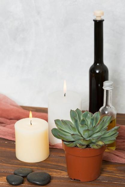 Pianta di cactus; candela accesa; la pietra e bottiglia di olio essenziale sulla scrivania in legno Foto Gratuite