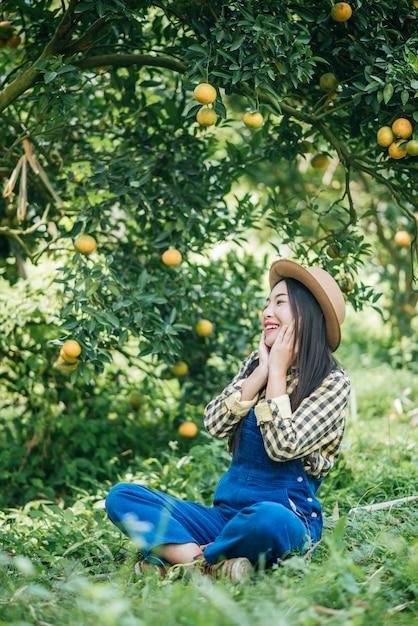 Piantagione di orange Foto Gratuite