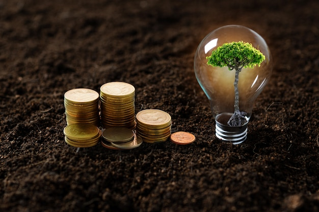 Piantare alberi, alberelli che crescono nella lampadina e accatastati di monete di denaro Foto Premium