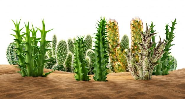 Piante del deserto sulla sabbia Foto Premium
