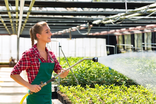 Piante di innaffiatura del giardiniere commerciale femminile Foto Premium