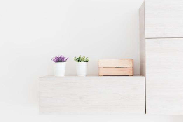Piante e scatola vicino al frigorifero Foto Gratuite