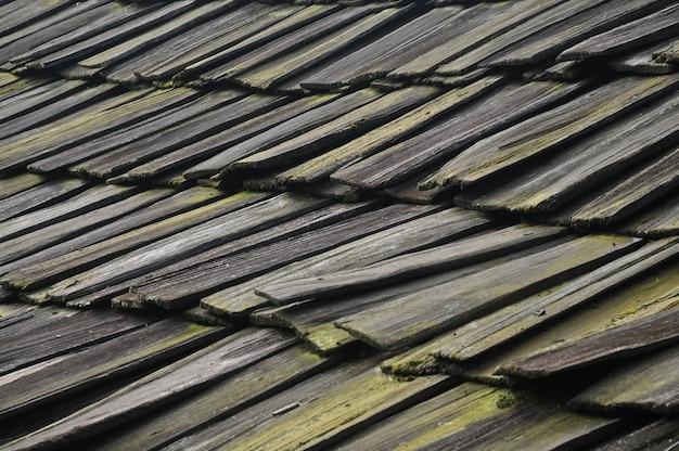 Piastrelle di legno ripetute con muschi e licheni in asia