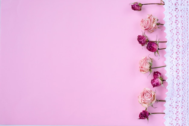 Piccole rose asciutte su sfondo rosa pastello, Foto Premium