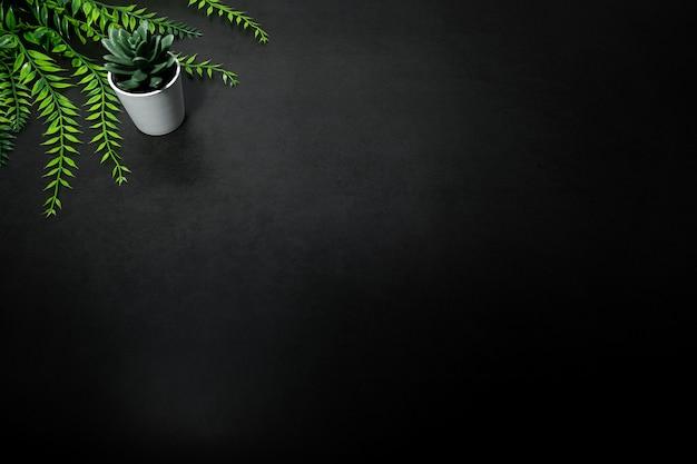 Piccolo albero verde e foglia verde su sfondo scuro vuoto Foto Premium