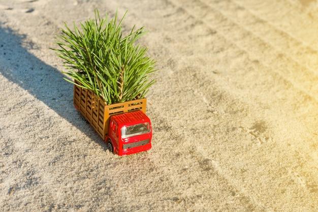 Piccolo camion giocattolo con albero di natale sul sentiero forestale Foto Premium