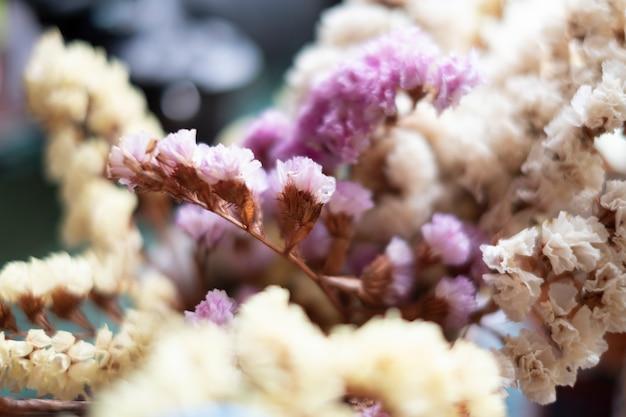 Piccolo fiore Foto Gratuite