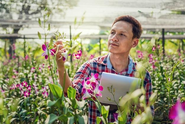 Piccolo imprenditore asiatico dell'azienda agricola di giardinaggio dell'orchidea Foto Premium