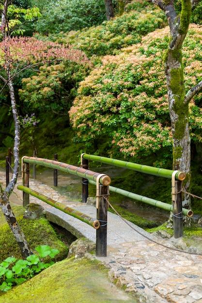 Piccolo ponte di bambù in autunno in giappone Foto Gratuite