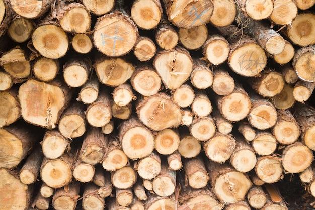 Pile di tronchi di legno scaricare foto gratis for Ccnl legno e arredamento industria