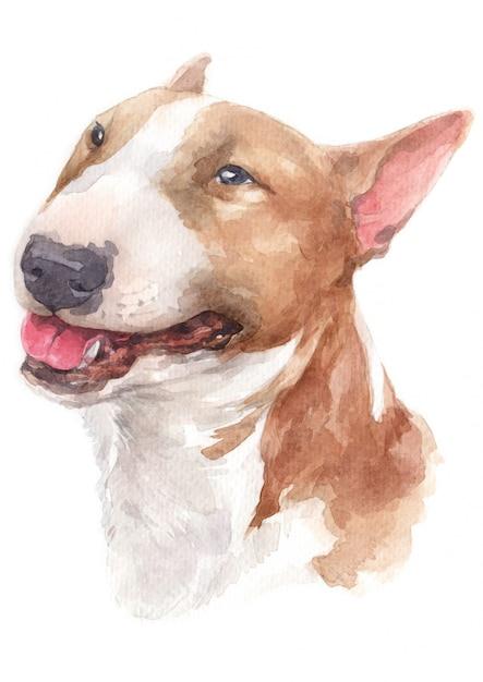 Pittura ad acquerello, cane marrone, faccia bianca, faccia buffa bull terrier Foto Premium