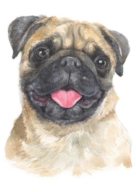 Pittura ad acquerello di pug Foto Premium