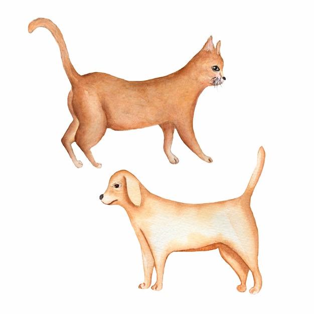 Pittura ad acquerello di un cane e un gatto rosso Foto Premium