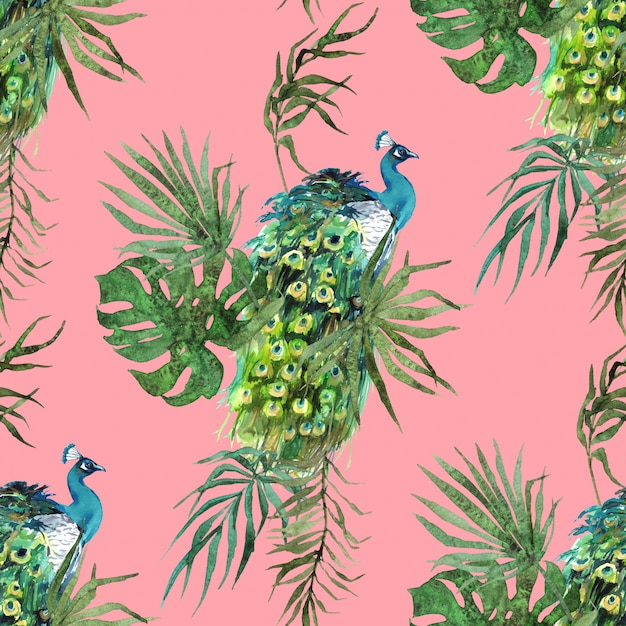 Piume di pavone e foglie tropicali acquerello modello Foto Premium