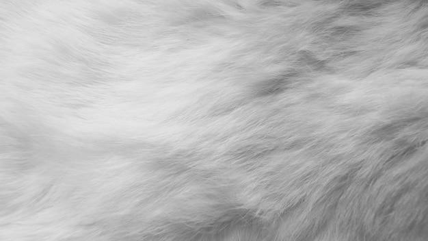 Piume di seta bianche. lana, pelle di coniglio bianca Foto Premium