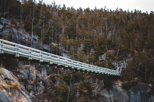 Ponte bianco sul fiume Foto Gratuite
