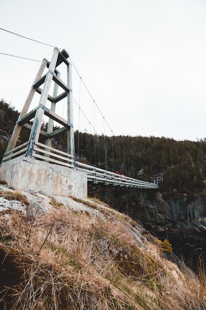 Ponte di legno bianco sul fiume Foto Gratuite