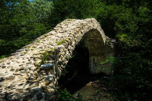 Ponte regina tamar Foto Premium