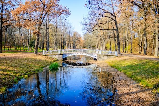 Ponti parco autunnale della città. autunno dorato autunno nel parco fogliame giallo Foto Premium