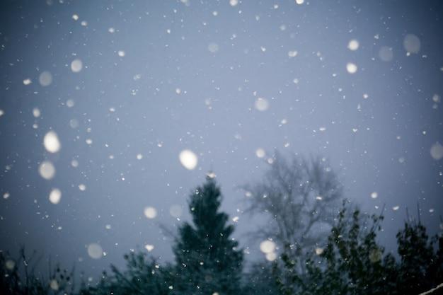Prima tempesta di neve Foto Premium