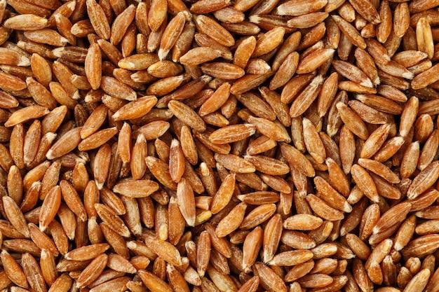 Primo piano del riso sbramato del gelsomino. consistenza del grano organico Foto Premium
