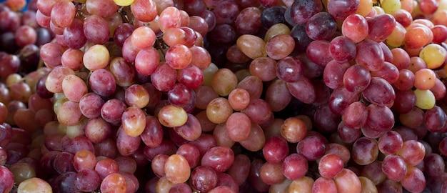 Primo piano di grappoli d'uva Foto Premium