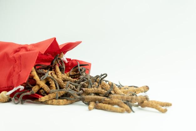 Primo piano di ophiocordyceps sinensis o funghi cordyceps in sacchetto di stoffa rossa Foto Premium