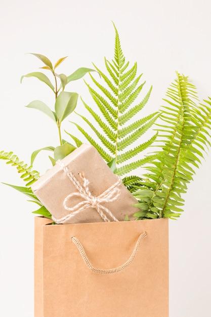 Primo piano di un contenitore di regalo e foglie verdi della felce in sacco di carta marrone Foto Gratuite