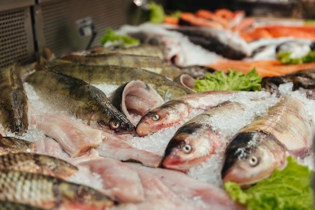 Primo piano di un pesce crudo in una vetrina Foto Gratuite